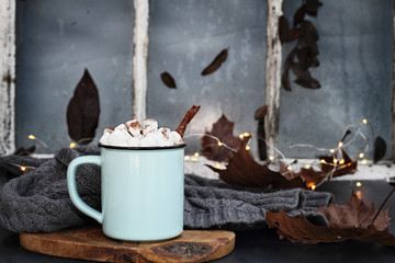 Sweet Hot Cocoa with Marshmallows and Cinnamon Bark