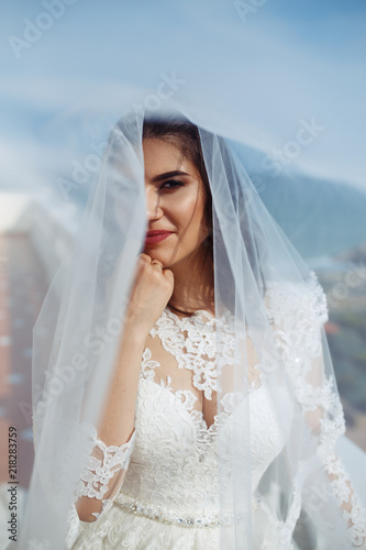 A beautiful bride under a veil.She in a white wedding dress enjoying ...