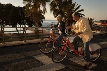Senior couple riding bicycle at promenade