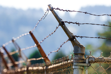 Barbed wire fence shining in the sun