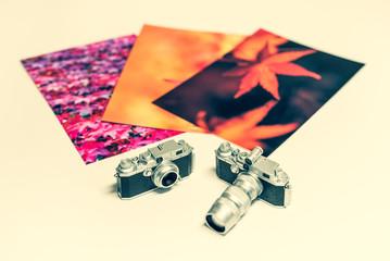 秋の写真 ネガフィルム 正方形