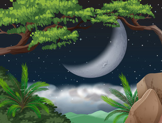 Cresent moon over jungle