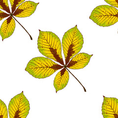 Seamless vector pattern with autumn leaves.