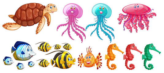 A set of sea animals