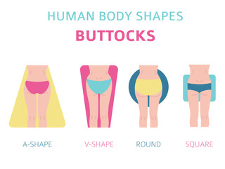 Human body shapes. Woman buttocks types set