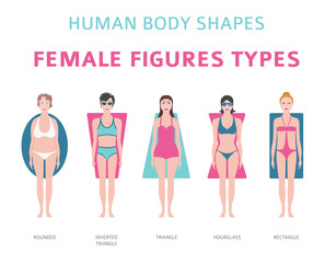 Human body shapes. Female figures types set