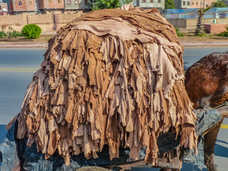 Donkey carrying hides to a tannery in Fez, Morocco