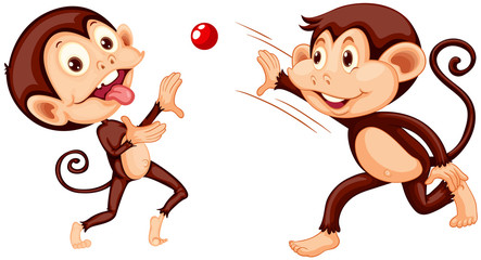 Monkey playing ball on white background