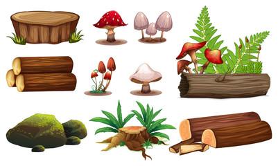 A set of wood element