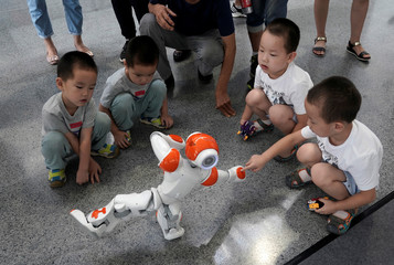 A boy touches a robot as it performs Taiji, a traditional form of Chinese martial arts, at the WRC in Beijing