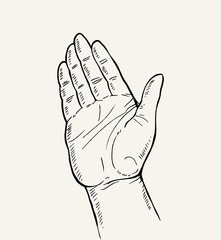 Hand Drawn Sketch of hand gesture,open palm - hand gesture