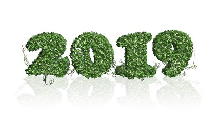 Year 2019 with reflections - 3D illustration - year number  - New Year -