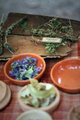 celtic medicinal herbs
