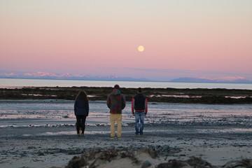 Midnight sun and the moon on the beach