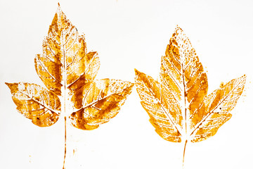 fall leaf print on paper