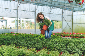Young woman working in greenhouse