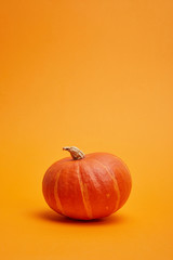 close-up view of whole ripe pumpkin on orange background