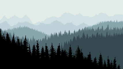 Evening or morning forest of coniferous spruce trees at dusk. On the horizon you can see mountains. Calm background, template for design. 10 eps