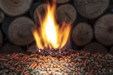 burn wood pellet and trunks