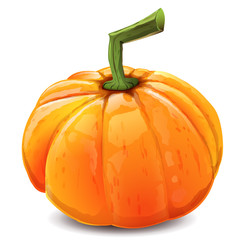 Orange autumn pumpkin