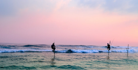 Silhouettes of the traditional stilt fishermen at sunset. Wide photo .