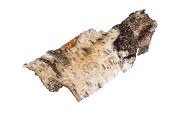 Piece of birch bark isolated on white background