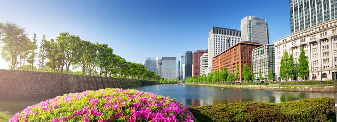 Wall Mural - panoramic view to the Tokyo, Japan from air. Cityscape with many modern business buildings