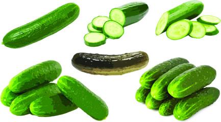 Ogórek zielony świeży i kiszony