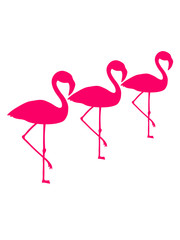 crew team 3 freunde silhouette umriss flamingo clipart comic cartoon vogel pink süß niedlich