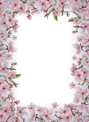 Pink Flowers Template Isolated on White Background with Text Copy Space. Watercolor Floral Design for Print, Announcement, Card, Invitation, Poster, Romantic Design, Wedding, Valentine Day, etc.