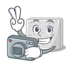 Photographer feta cheese block on plate cartoon