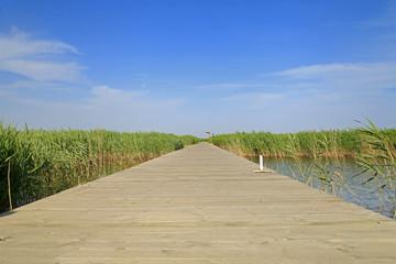 Wooden bridge under the blue sky in the wetland park