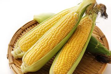 とうもろこし Fresh yellow corn