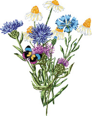 Vector image of a bouquet of wildflowers. All objects isolated.