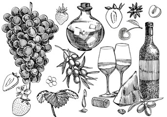 Vector set of vine products. Illustration in sketch style. Hand drawn design elements. Isolated on white background. Engraving style illustrations.