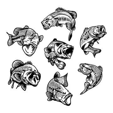illustration for fishing logo. Fisherman logo. Fishing logo