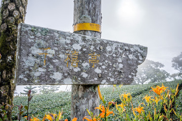 Taitung, Taiwan August 13, 2018:the daylily hillside landmark at Taimali Mountain, Taitung East Rift Valley of Taiwan