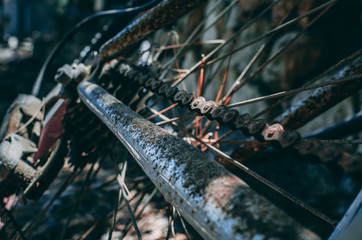 Old rusty bicycle chain and back wheel
