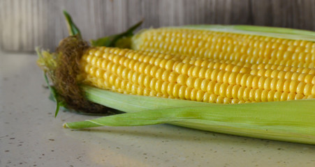 Fresh corn on the cob on the table, close-up