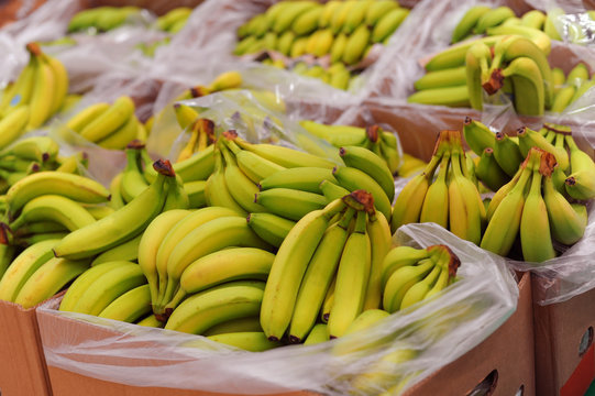Ripe bananas on boxes in supermarket