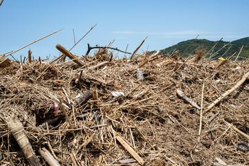déchets rapportés par la mer et entassés sur la plage au Japon