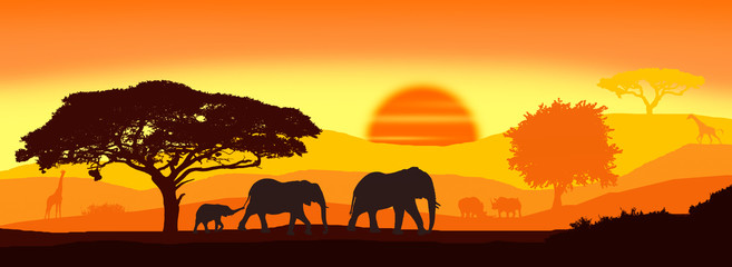 Wild animals silhouette; family of elephants, with giraffes and rhinos.