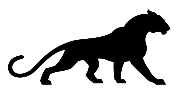 Black cougar on a white background