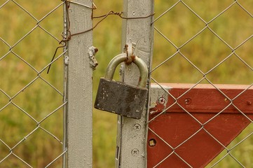 large gray and old padlock on an iron fence from a grid