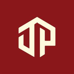 DP Initial letter hexagonal logo vector