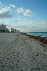 Buildings along the sandy beach at Fort Lauderdale Beach in Florida