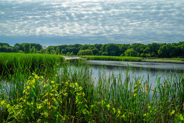 Nature Preserve Wood Lake Nature Center in Richfield, Minnesota