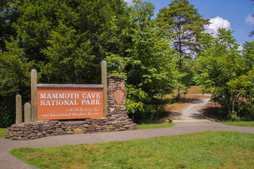 Wall Murals Road in forest Mammoth Cave National Park Entrance Sign
