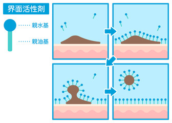 界面活性剤で肌の汚れを落とす仕組み