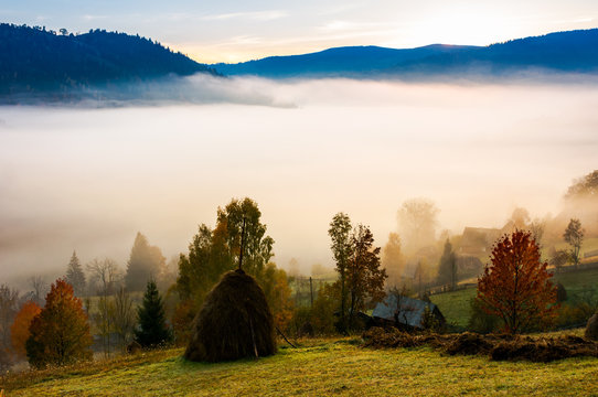 fog in the rural valley. gorgeous sunrise in autumn mountains. haystack trees on the grassy hill